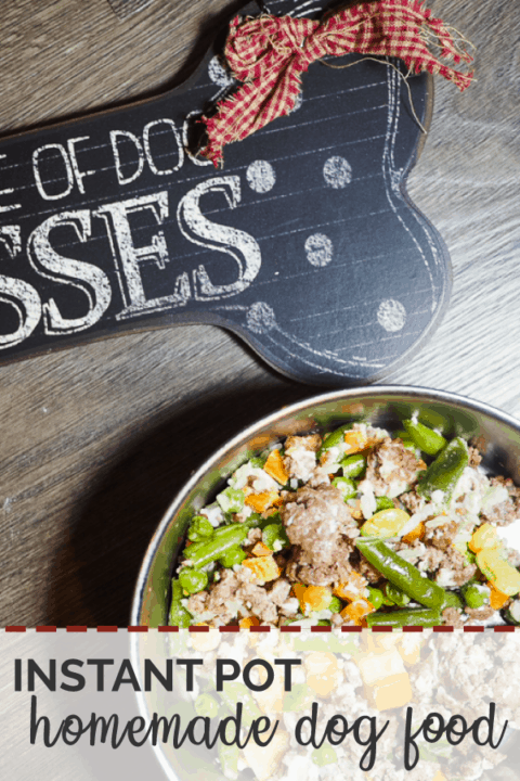 """A pin image of a bowl of ground beef, vegetables, and rice with a """"Beware of Dog Kisses"""" sign on a gray wood background."""