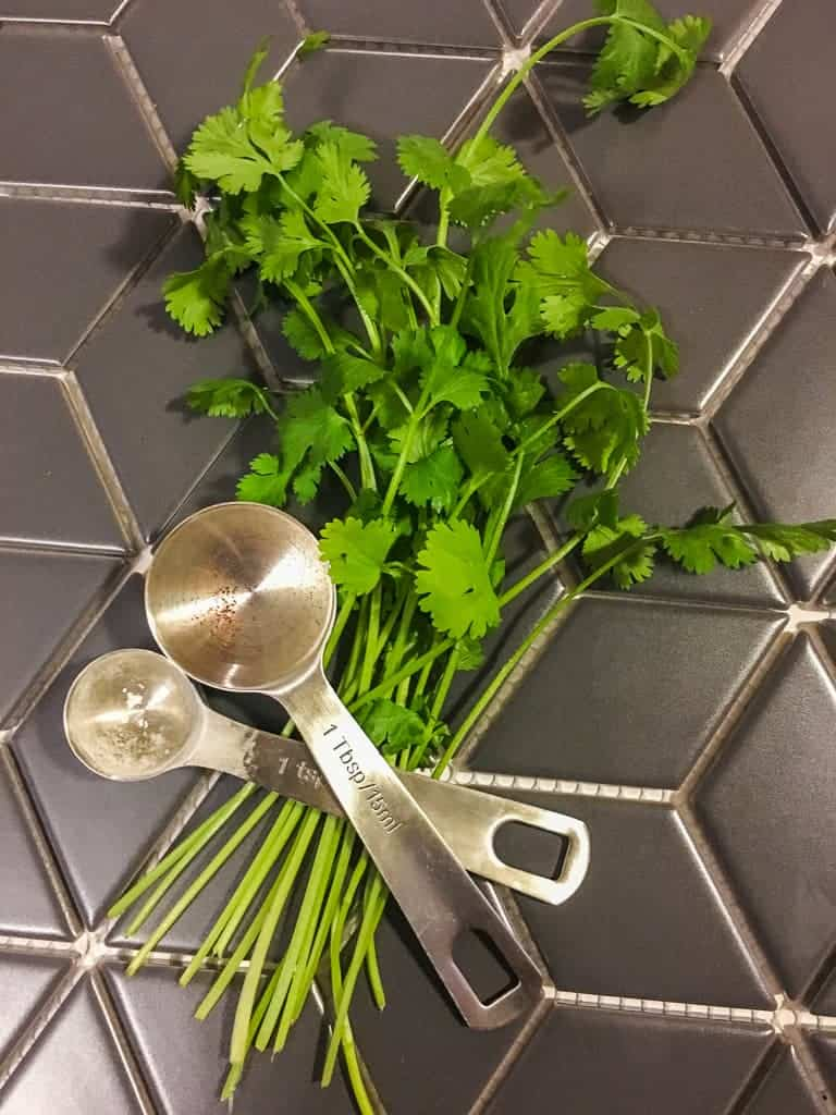 Cilantro and measuring spoons on a gray tile surface.