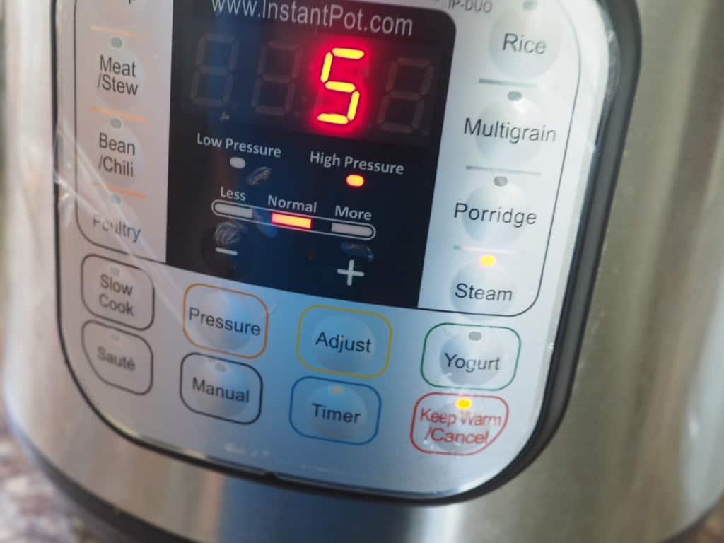 An Instant Pot with 5 minutes on the screen cooking homemade dog food.