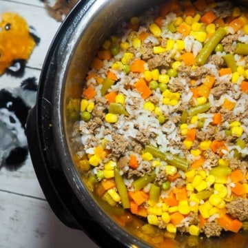 An instant pot with homemade dog food in it - rice, ground beef, vegetables - with some dog toys on the side.