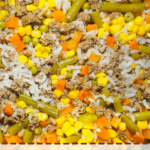 A pin image of an instant pot with homemade dog food in it - rice, ground beef, vegetables.