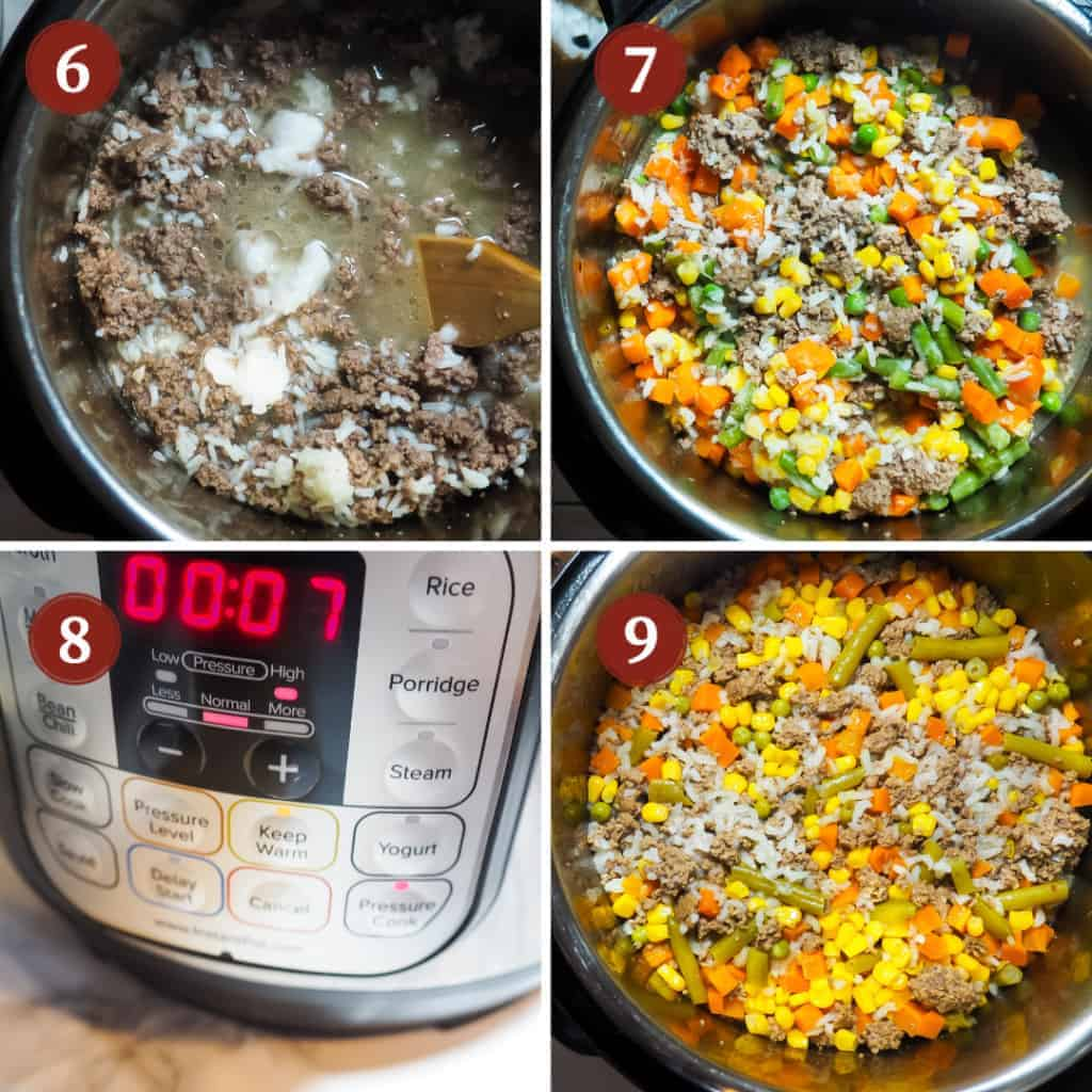 A process collage of images for making dog food in an instant pot, steps 6 - 9.