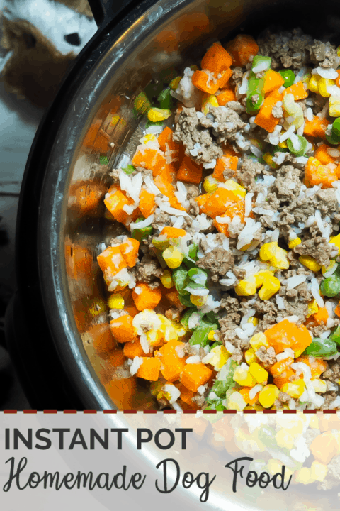 A pin image of an instant pot with uncooked homemade dog food in it - rice, ground beef, vegetables - with some dog toys on the side.