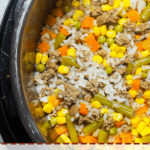 A pin image of an instant pot with homemade dog food in it - rice, ground beef, vegetables - with some dog toys on the side.