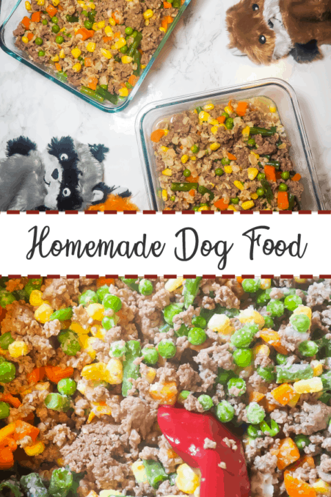 A pin image of two glass containers of homemade dog food on a marble background with three dog toys on the top half and cooked homemade dog food on the bottom.