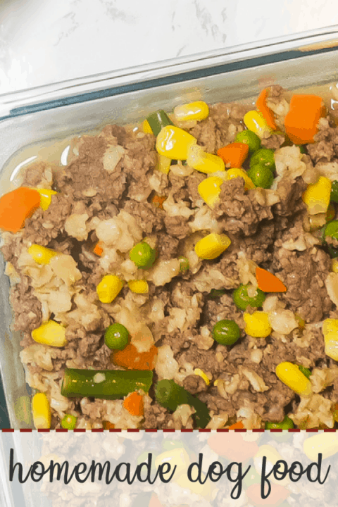 A pin image of a glass container of homemade dog food.