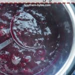 A pin image of a spoon scooping paleo blueberry jam out of an Instant Pot.