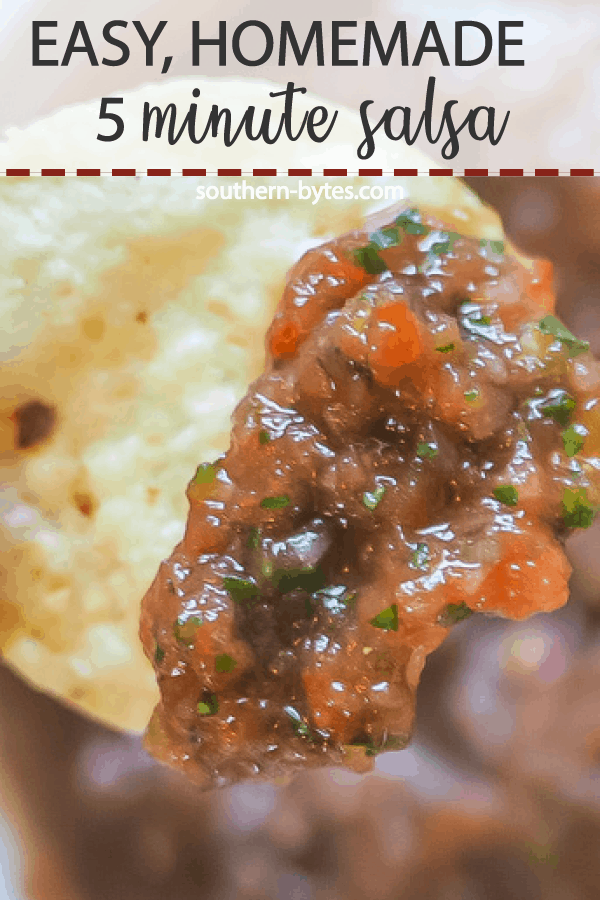 A pin image of a chip with homemade salsa on it.