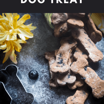 A pin image of a jar of blueberry dog treats spilling onto a gray background with blueberries, a yellow napkin, a bone cookie cutter, and a yellow flower.