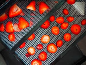 Sliced strawberries on the trays of a dehydrator.