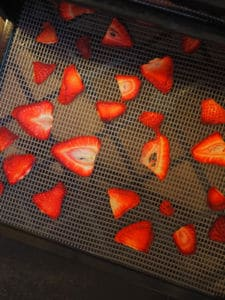 A dehydrator tray with sliced strawberries on it.