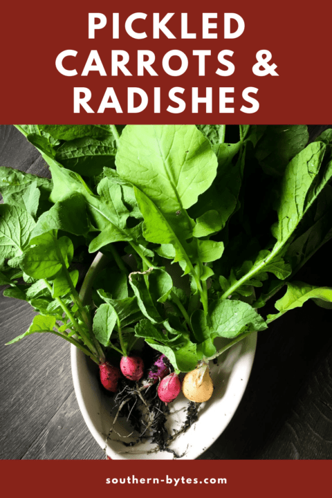 a pin image of a bowl of candy radishes with leafy greens