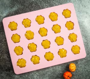 pumpkin dog treats in a pink silicone mold