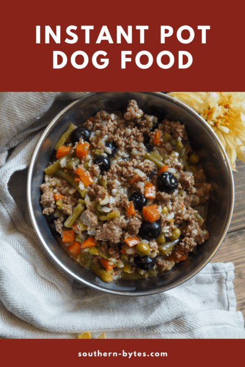 a pin image of a bowl of homemade dog food
