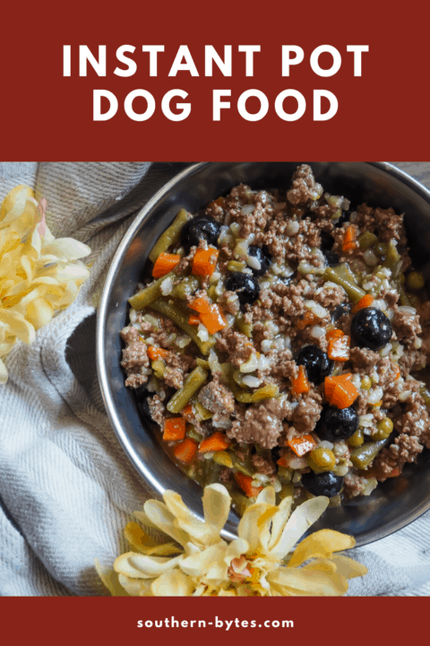 a pin image of a bowl of homemade dog food.