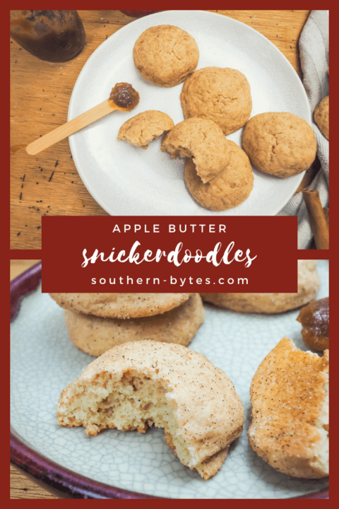 A pin image with a plate of snickerdoodles on top, a snickerdoodle broken in half on the bottom, and text overlay in the middle.