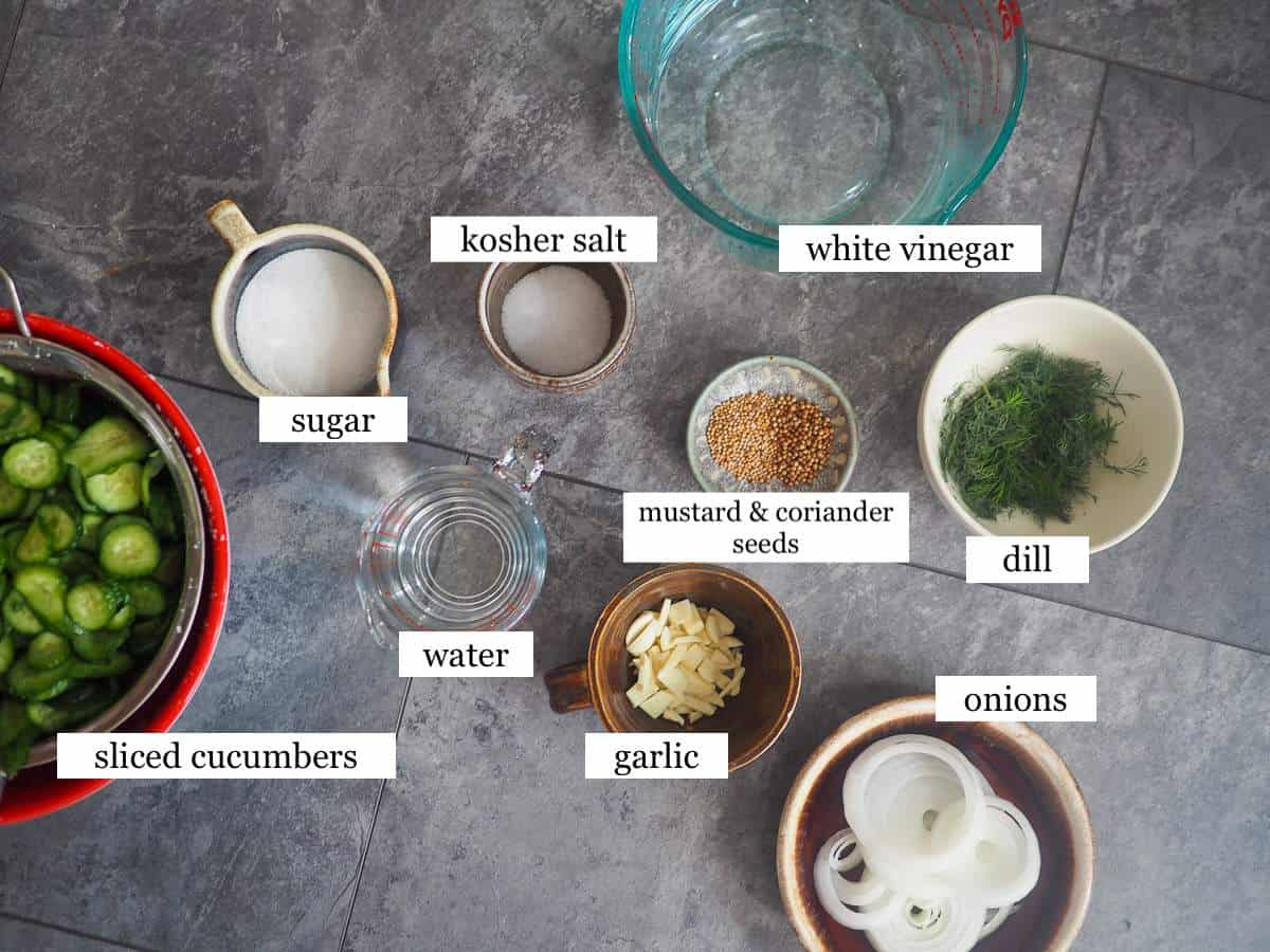 The ingredients in dill pickles, laid out and labeled.