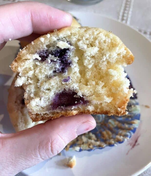 A blueberry buttermilk muffin sliced in half.